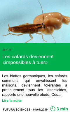 Science les cafards deviennent impossibles a tuer page001