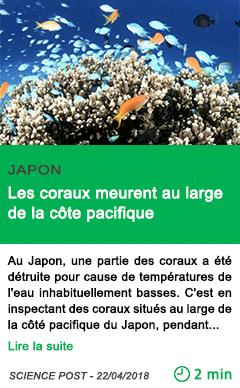 Science les coraux meurent au large de la cote pacifique