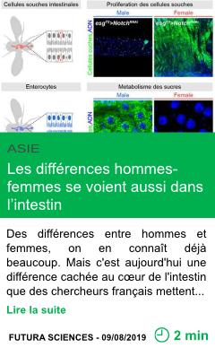 Science les differences hommes femmes se voient aussi dans l intestin page001