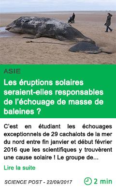 Science les eruptions solaires seraient elles responsables de l echouage de masse de baleines