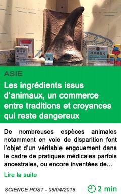 Science les ingredients issus d animaux un commerce entre traditions et croyances qui reste dangereux