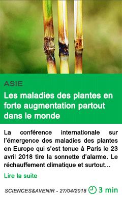 Science les maladies des plantes en forte augmentation partout dans le monde