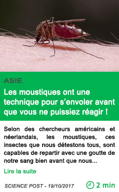 Science les moustiques ont une technique pour s envoler avant que vous ne puissiez reagir