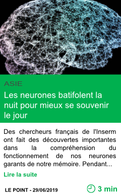 Science les neurones batifolent la nuit pour mieux se souvenir le jour page001
