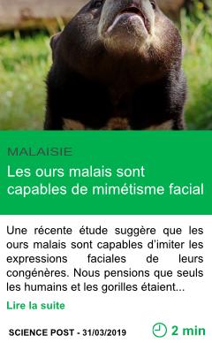 Science les ours malais sont capables de mimetisme facial page001