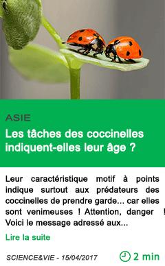 Science les taches des coccinelles indiquent elles leur age