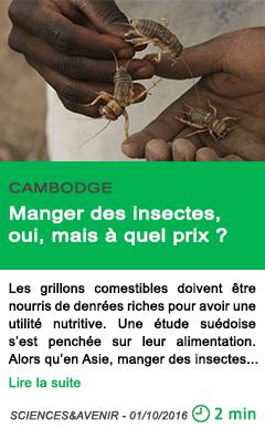 Science manger des insectes oui mais a quel prix