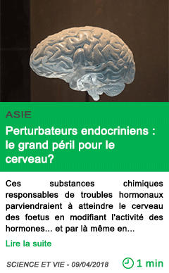 Science perturbateurs endocriniens le grand peril pour le cerveau