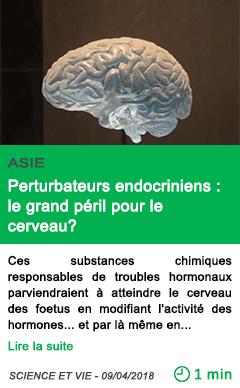 Science perturbateurs endocriniens le grand peril pour le cerveau