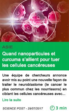 Science quand nanoparticules et curcuma s allient pour tuer les cellules cancereuses