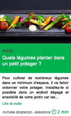 Science quels legumes planter dans un petit potager