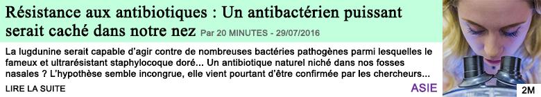 Science resistance aux antibiotiques un antibacterien puissant serait cache dans notre nez