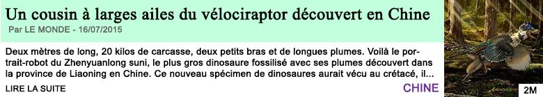 Science sante un cousin a larges ailes du velociraptor decouvert en chine 1