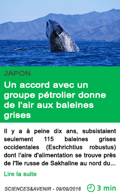 Science un accord avec un groupe petrolier donne de l air aux baleines grises