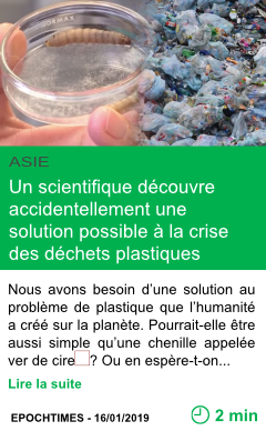 Science un scientifique decouvre accidentellement une solution possible a la crise des dechets plastiques le ver de cire page001