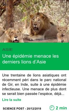 Science une epidemie menace les derniers lions d asie page001