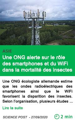 Science une ong alerte sur le ro le des smartphones et du wifi dans la mortalite des insectes
