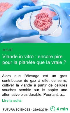 Science viande in vitro encore pire pour la planete que la vraie page001