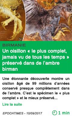 Science vieux de 99 millions d annees un oisillon le plus complet jamais vu de tous les temps preserve dans de l ambre birman