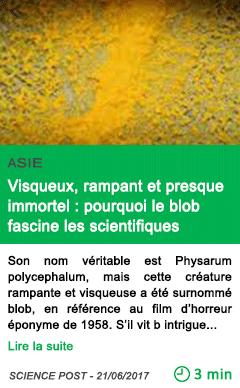 Science visqueux rampant et presque immortel pourquoi le blob fascine les scientifiques