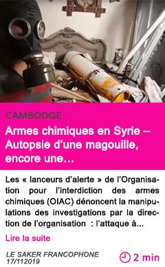Societe armes chimiques en syrie autopsie d une magouille encore une
