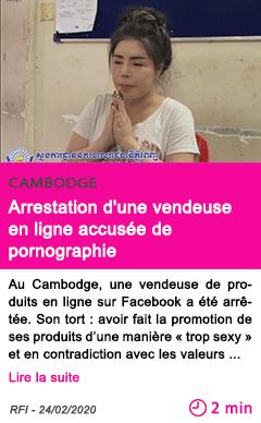 Societe arrestation d une vendeuse en ligne accusee de pornographie