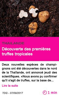 Societe decouverte des premieres truffes tropicales