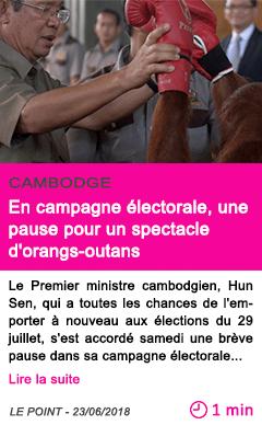 Societe en campagne electorale une pause pour un spectacle d orangs outans