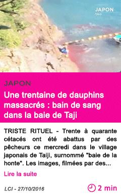 Societe japon une trentaine de dauphins massacres bain de sang dans la baie de taji