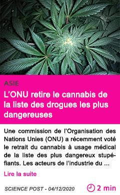 Societe l onu retire le cannabis de la liste des drogues les plus dangereuses