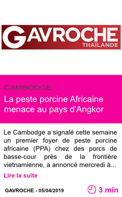 Societe la peste porcine africaine menace au pays d angkor page001