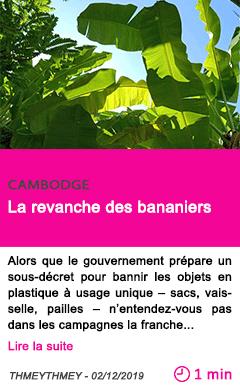 Societe la revanche des bananiers