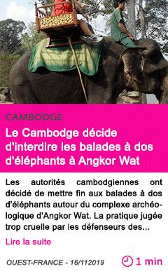 Societe le cambodge decide d interdire les balades a dos d elephants a angkor wat