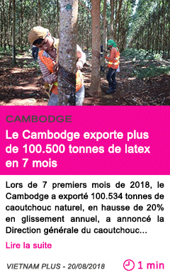 Societe le cambodge exporte plus de 100
