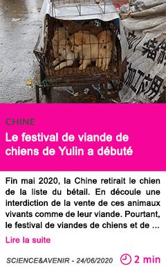 Societe le festival de viande de chiens de yulin a debute