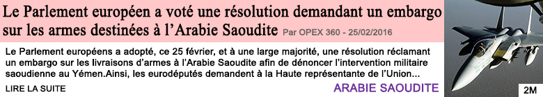 Societe le parlement europeen a vote une resolution demandant un embargo sur les armes destinees a l arabie saoudite