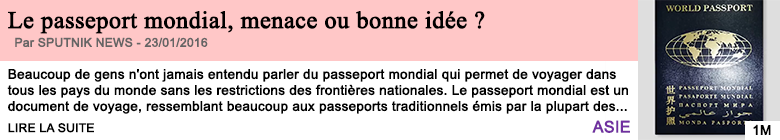 Societe le passeport mondial menace ou bonne idee