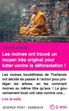 Societe les moines ont trouve un moyen tres original pour lutter contre la deforestation