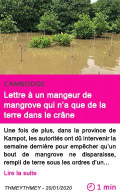 Societe lettre a un mangeur de mangrove qui n a que de la terre dans le crane