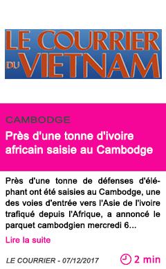 Societe pres d une tonne d ivoire africain saisie au cambodge