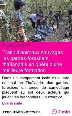 Societe trafic d animaux sauvages les gardes forestiers thailandais en quete d une meilleure formation page001