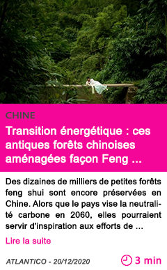 Societe transition e nerge tique ces antiques fore ts chinoises ame nage es fac on feng shui pourraient e tre la cle de l avenir carbone du pays