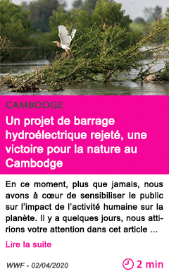 Societe un projet de barrage hydroelectrique rejete une victoire pour la nature au cambodge