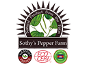 Sothy s logo