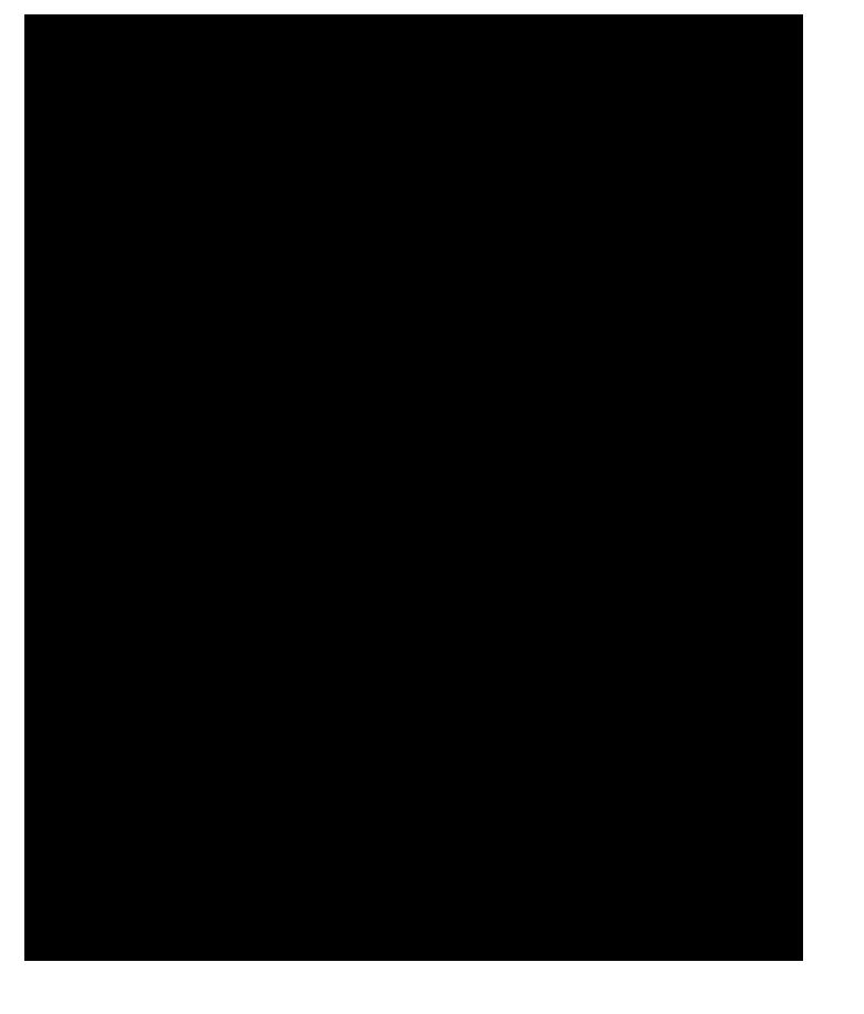 Taramanathon 1