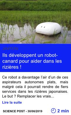 Technologie ils developpent un robot canard pour aider dans les rizieres page001