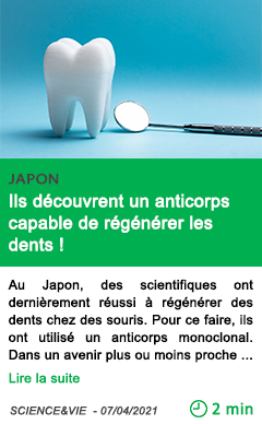 Science ils de couvrent un anticorps capable de re ge ne rer les dents