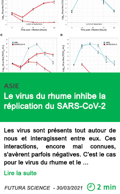 Science le virus du rhume inhibe la re plication du sars cov 2